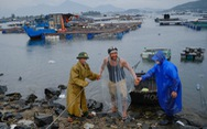 Vận động người nuôi cá lồng bè lên bờ tránh bão