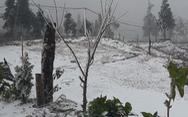 Nhiệt độ xuống dưới 0 độ C, tuyết rơi phủ trắng Y Tý