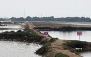 Chuyện không tin nổi: đất ruộng muối cũng sốt giá, vì sao nên nỗi?