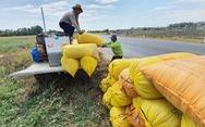 Kiểm soát chi phí đầu vào giảm gánh nặng cho nông dân