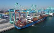 Cảng container không phát thải carbon đầu tiên trên thế giới đi vào hoạt động