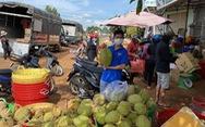 Nông dân ngại đầu tư vụ mới