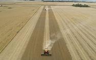 'Quà' ông Trump tặng ông Biden: Xuất khẩu nông nghiệp sang Trung Quốc đạt kỷ lục