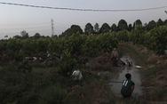 Chặn quốc lộ đua xe, hàng trăm 'quái xế' chạy vô vườn, lao xuống kênh... trốn CSGT