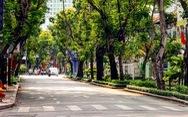 Sài Gòn bao dung - TP.HCM nghĩa tình: Người tình đầu tiên, người yêu cuối cùng