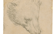 Phác họa đầu gấu của Leonardo da Vinci dự kiến bán 16 triệu USD