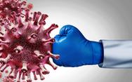 NÓNG: Tìm thấy tử huyệt của virus corona giúp chặn COVID-19