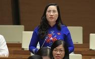 Đại biểu Quốc hội: Dập dịch COVID-19 quyết liệt nhưng không nên thái quá, cực đoan