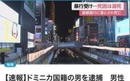 Nhật bắt được nghi phạm đánh đập, đẩy thanh niên Việt xuống sông chết ở Osaka