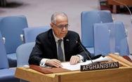 Đại sứ Afghanistan tại Liên Hiệp Quốc tố cáo Taliban vi phạm nhân quyền