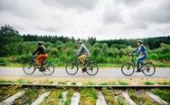 Bỉ xây dựng đường cao tốc dành cho xe đạp