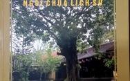 Giải mã bí ẩnngôi chùa lớn nhất xứ Đàng Trong