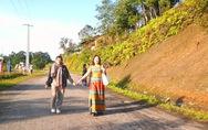 Băng qua 'cung đường muối' Tây Giang ngắm cây pơ mu canh cửa núi rừng