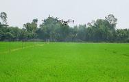 Ứng dụng thiết bị bay vào sản xuất nông nghiệp