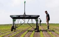 Robot diệt cỏ dại chạy bằng năng lượng Mặt trời