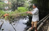 Clip nước thải KCN Lê Minh Xuân xả thẳng ra kênh rạch Bình Chánh