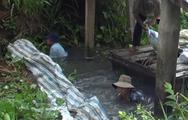 Video: Người dân ngăn dòng, lấp kênh vì lo sợ nguồn nước ô nhiễm