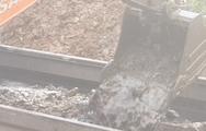 Video: Khai quật hàng trăm tấn rác thải bị đổ trộm ở Bình Phước