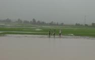 Video: Hơn 300 ngôi nhà bị ngập do bão số 6 gây ra ở Đắk Lắk