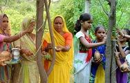 Video: Tục lễ trồng 111 cây xanh mỗi khi có một bé gái chào đời