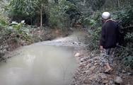 Video: Hàng trăm lít dầu thải loang lổ trên sông Hiếu