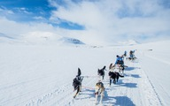 Thám hiểm Bắc Cực cùng 'chàng trai khoái phiêu lưu' Hoàng Lê Giang