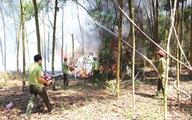 Yêu cầu tăng cường công tác phòng cháy, chữa cháy rừng