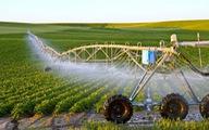 Đào tạo nguồn nhân lực nông nghiệp công nghệ cao