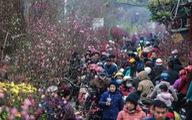 Dân Hà Nội đổ xô ra chợ hoa mua đào chơi Tết