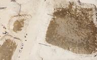 Dân phản đối doanh nghiệp múc cát gần đê biển vì lo mất an toàn mùa bão