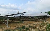 Lập dự án điện mặt trời mái nhà nông nghiệp nhưng bên dưới chẳng trồng gì