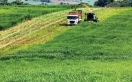 FDI Nhật Bản hướng vào nông nghiệp