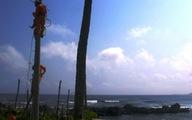 Mùa xuân đảo Bé có điện