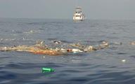 Hơn 1 triệu người đề nghị Liên Hợp Quốc cấm sử dụng nhựa một lần