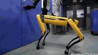 'Choáng' trước hình ảnh robot đi bộ, leo bậc thang thành thạo