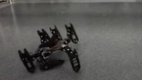 Robot bắt chước loài vật tự đi tiếp khi 'bị thương'