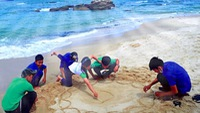 Một năm thành công của du lịch Việt Nam