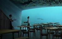 Ăn ở nhà hàng 'nửa dưới nước, nửa trên bờ' có gì vui?
