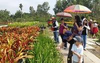 Nhộn nhịp làng hoa kiểngTân Quy Đông