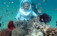 """""""Đi bộ du lịch"""" dưới đáy biển Nha Trang"""