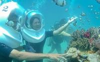Đi bộ dưới đáy biển Nha Trang