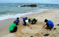 Du lịch xanh trồng cây ghi tên mình ở Phú Quốc