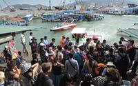 Nha Trang tăng khách Trung Quốc, Nghệ An hoa hướng dương thu hút khách