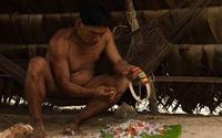 Vào rừng Ecuador xem bộ lạc chân biến dạng vì trèo cây