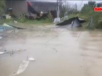 Khánh Hòa: Bão số 12 tung hoành, người dân gồng mình chống bão