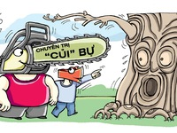 Đốn cây to ném vào lò phải cẩn thận