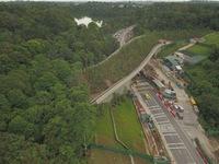 Singapore làm cầu vượt trồng cây rừng dành cho động vật