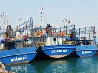 Thủ tướng chỉ đạo điều tra vụ tàu vỏ thép kém chất lượng