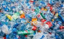 Lần đầu phát hiện vi hạt nhựa xâm nhập cơ thể người