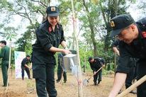 Tuổi trẻ Cảnh sát cơ động trồng cây xanh dịp về nguồn báo công